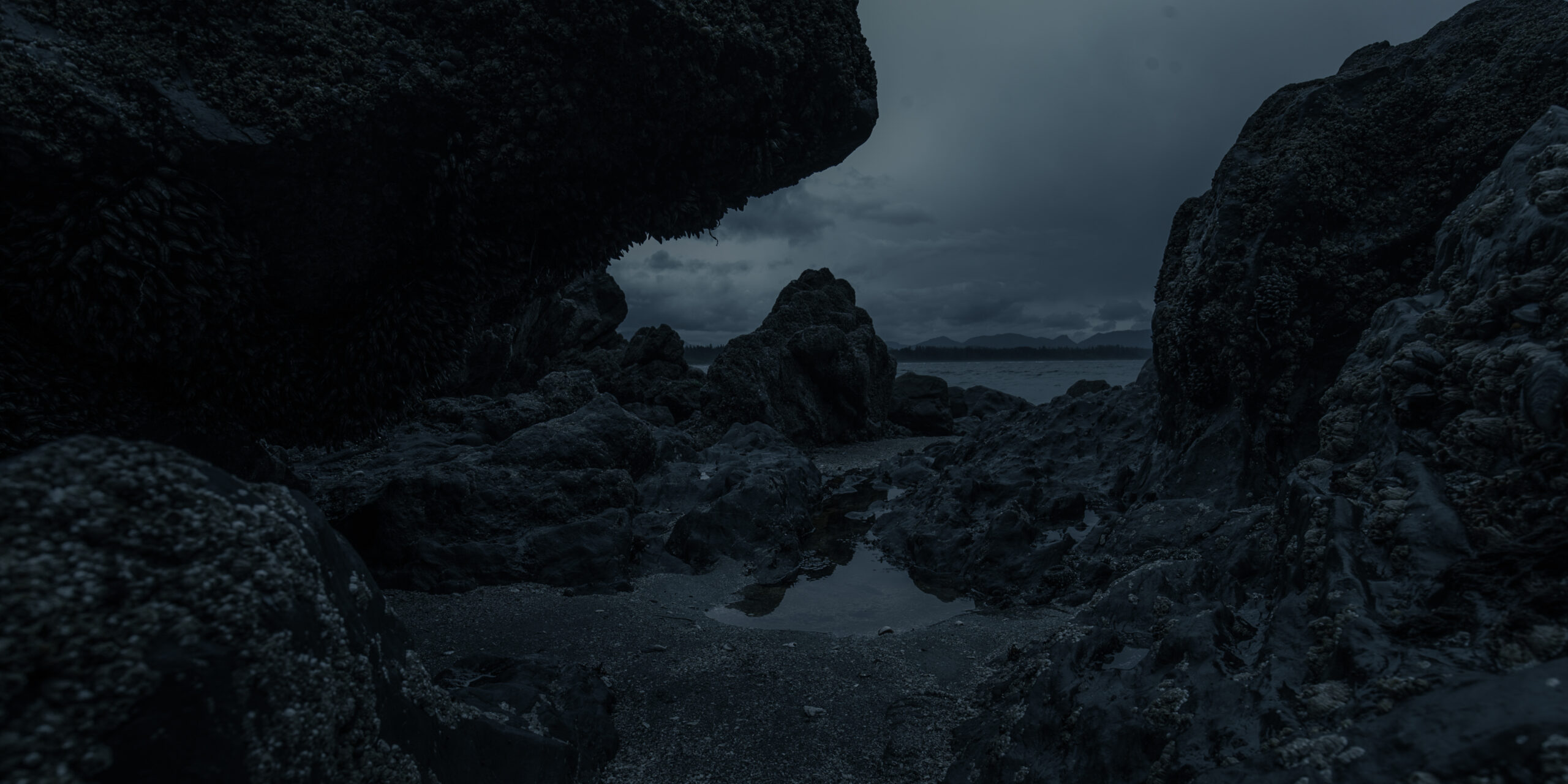 Rough Shore with Rocks