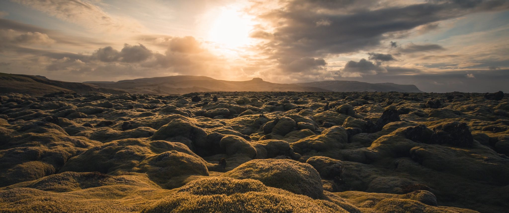 Sun setting above surreal moss landscape